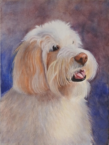 Watercolor paintings of dogs
